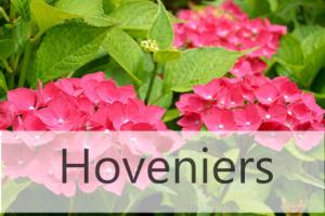 Hovenier W